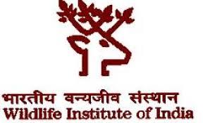 Wildlife Institute of India. WII